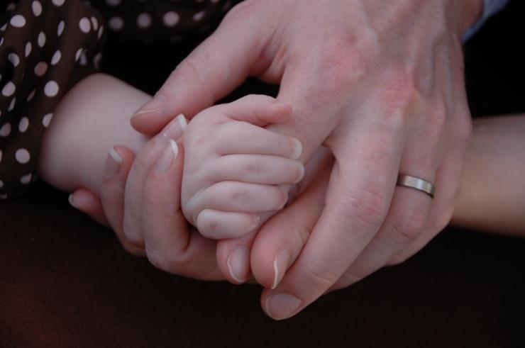 DSC_5535 Family Hands 2
