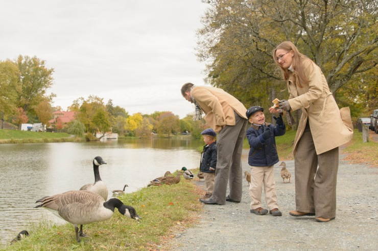 Family sharing bread with geese